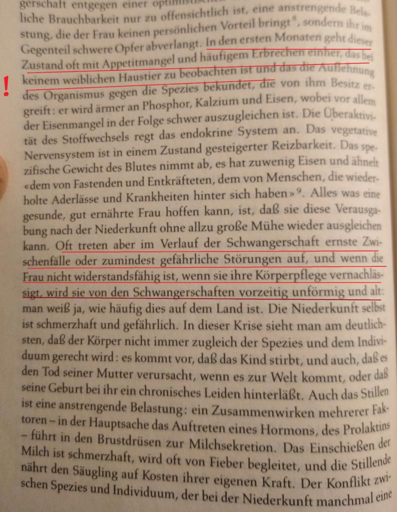 Beauvoir Facts IX