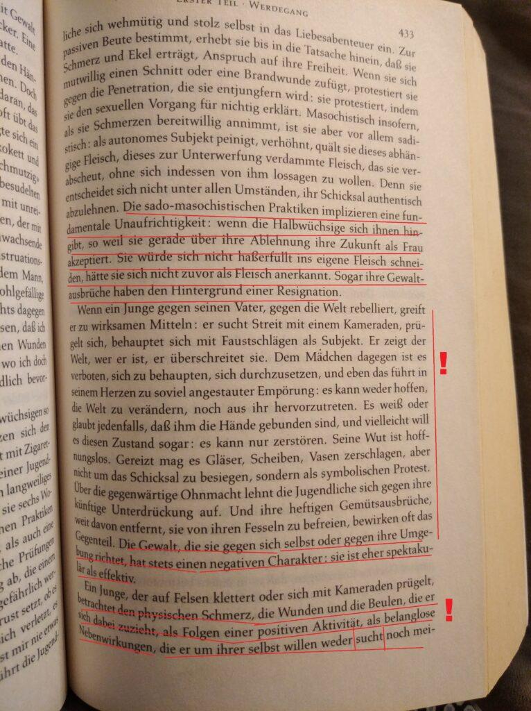 Beauvoir Facts VIII